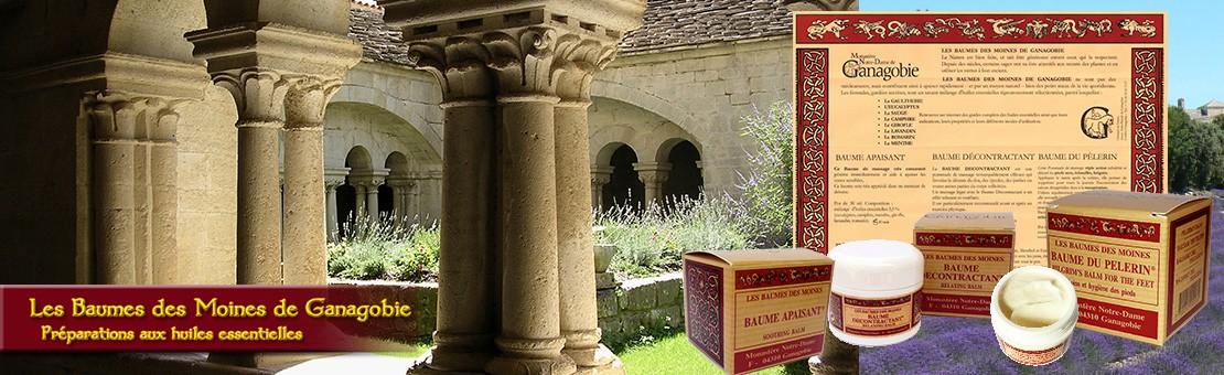 Les Baumes de l'Abbaye de Ganagobie
